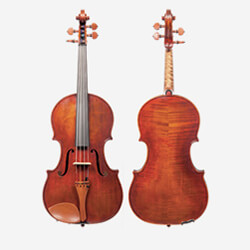 Violin front and back