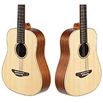 Echo Bridge EB200 1/2 Dreadnought Guitar, Spruce Top with Nylon Strings and Soft Case