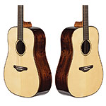 Echo Bridge EB450 Dreadnought Guitar, Solid Spruce Top with Hard Case